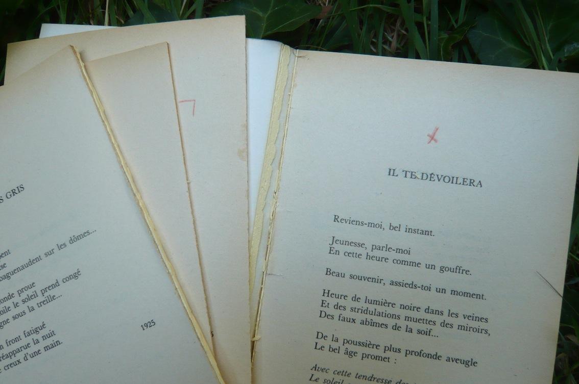 La vie d'un livre-ungaretti3